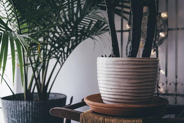 Trabajo en casa considera elementos para decorar y dividir espacios